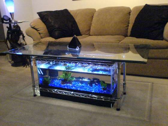 bookshelf aquarium plans